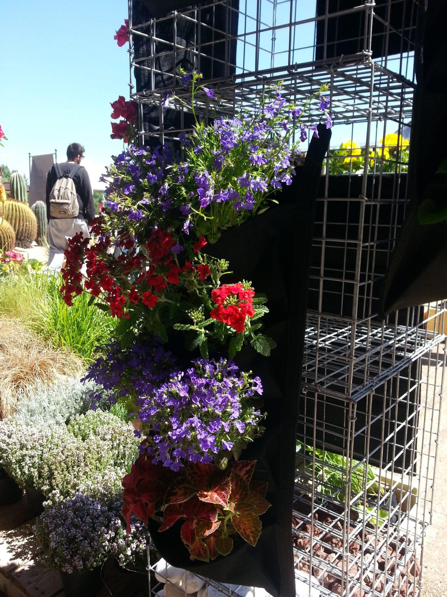 Orto pronto per arredamento giardini con inertecoinerteco for Arredamento piante