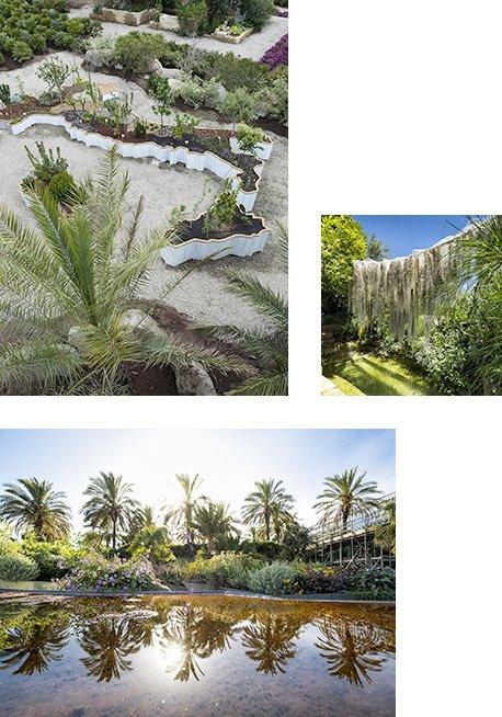 garden-desing-radicepura-concorso