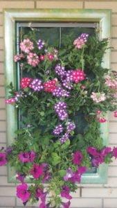 giardino-verticale-inerteco-116